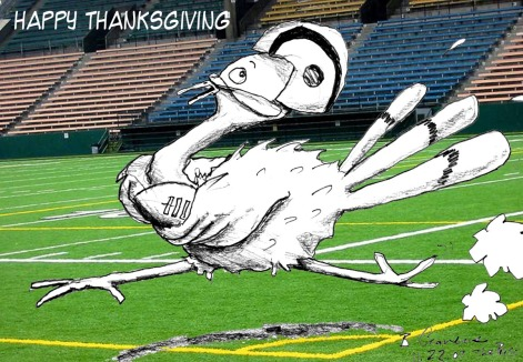 turkey-on-the-field-web.jpg